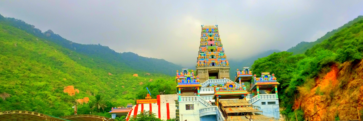 Cheap Airline Tickets to Coimbatore